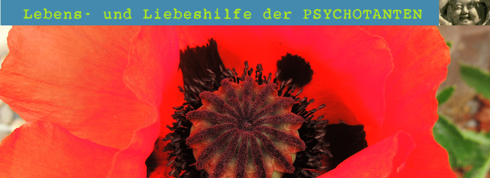 logo psychotanten